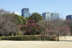The Imperial Palace East Gardens in Tokyo were stunning and there was almost no one there.