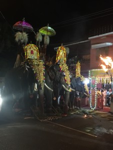 There was a street parade for what I can only assume was for my arrival. These elephants they'd manage to tame down nicely with several huge footcuffs and no doubt a bit of heavy beating in their youth.